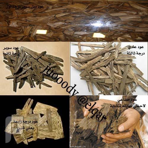 8c55ed002 كيف تعرف خشب العود الأصلي من المغشوش - مستعمل