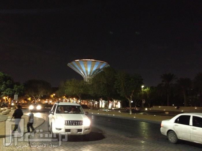 المتحف الوطني ودارة الملك عبدالعزيز ((تصويري)) منظر برج الرياض من حديقة المتحف