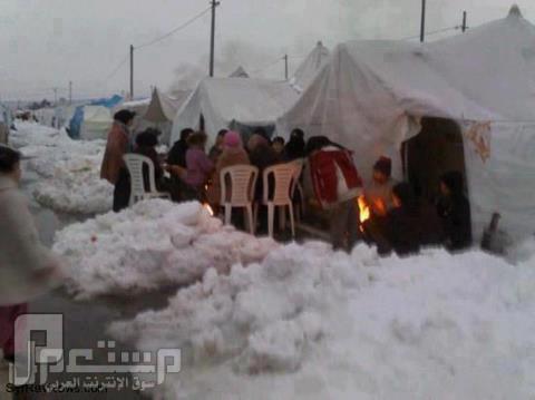سامحوني أهلي في سوريا