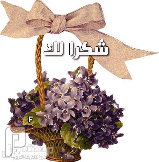 شكر خاص للعضو (حزين-الرياض)