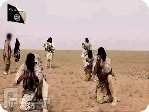 مجاهدون وليسو ارهابيون
