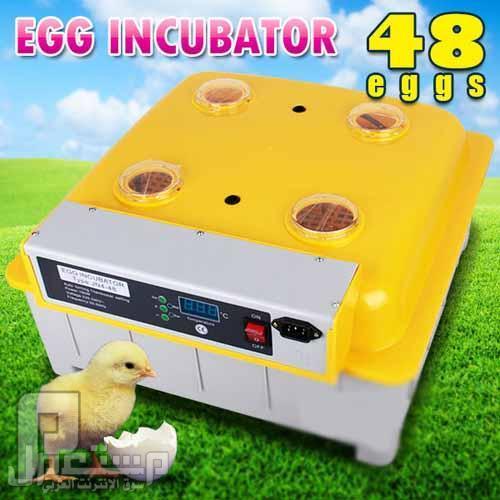 فقاسة بيض فل اوتوماتيك 48 بيضةEgg incubator hatching machine فقاسة 48 بيضة والسعر 999 ريال