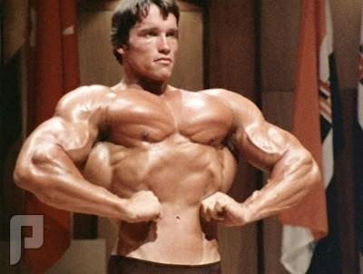 بناء العضلات