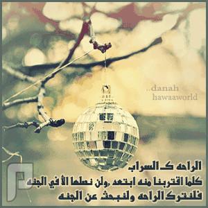 القصيدة التي أبكت الامام أحمد بن حنبل .