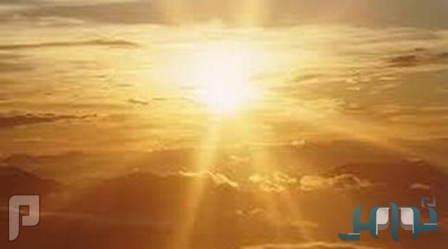 استشاري: احذروا أشعة الشمس والحشرات والنباتات السامة في الصيف