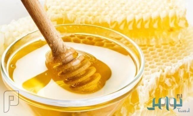 """دارسة استخدام """"العسل النقي"""" كبديل للمضادات الحيوية"""