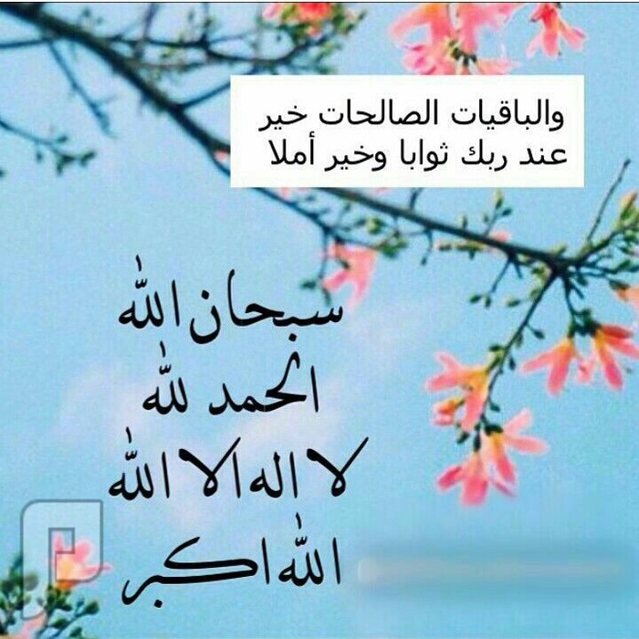 عرفه ويوم الجمعه
