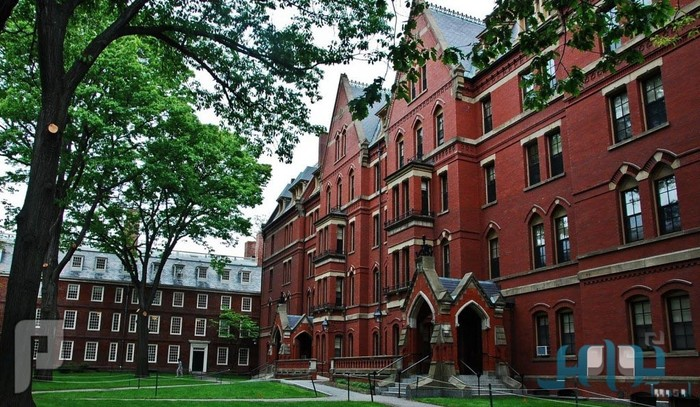 اكتشاف ثوري لعلاج السكري جامعة هارفارد بالولايات المتحدة الأمريكية