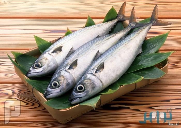 الأسماك.. الطعام المثالي لعلاج مرضى الروماتيزم