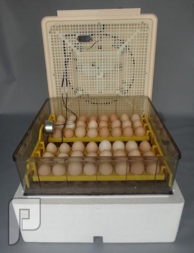جهاز تفقيس بيض الطيور الأتوماتيكي الذي يسع ل 96 بيضة ويعمل بالكهرباء