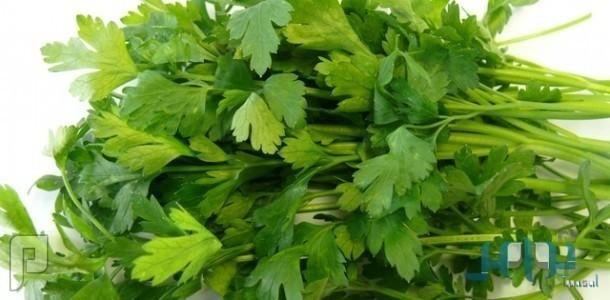 أعشاب البقدونس كنز الفيتامينات والمعادن