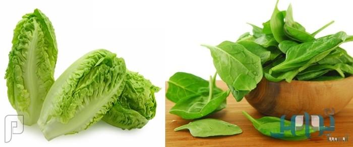 مقارنة بين القيم الغذائية للخس والسبانخ