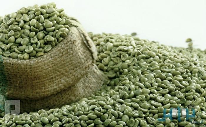 «القهوة الخضراء» قبل تناول الطعام يومياً تحرق الدهون