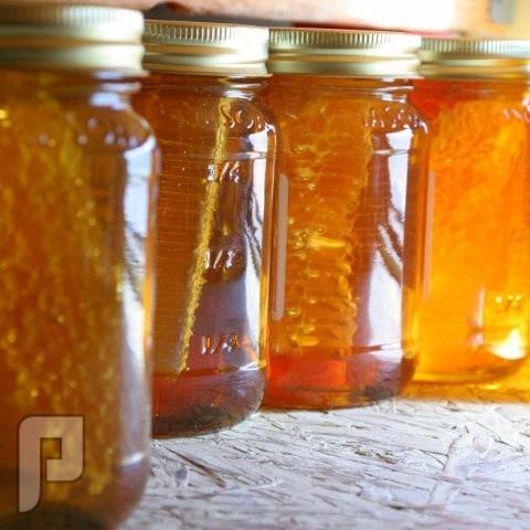 العسل بين علم الطاقة والغذاء