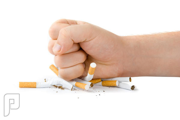 رسمياً.. 200 ريال غرامة للمدخنين داخل الجهات الحكومية وساحات المساجد رسمياً.. 200 ريال غرامة للمدخنين داخل الجهات الحكومية وساحات المساجد