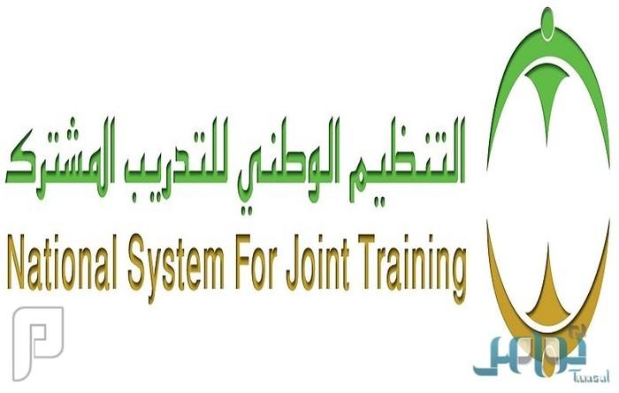 «التدريب المشترك» يبدأ استقبال الباحثين عن عمل للتنافس على 3 آلاف وظيفة