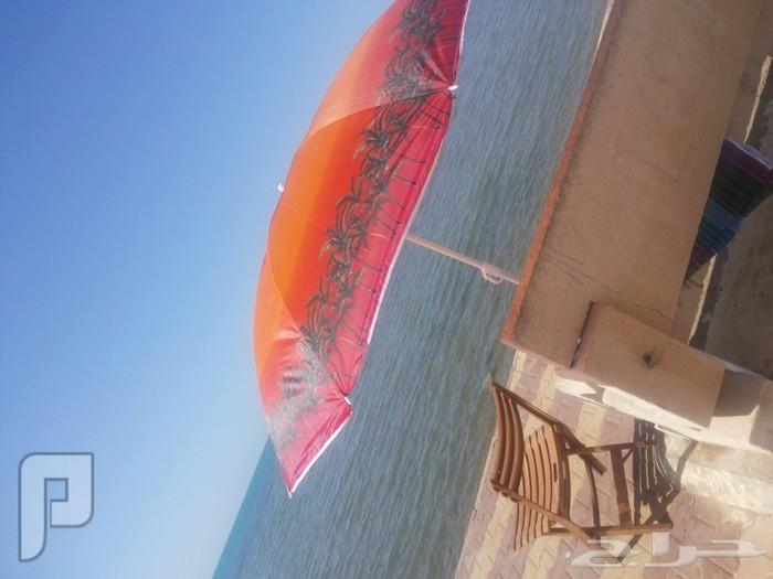 مظله للحدائق والبحر الوان جميله مظله للحدائق والبحر الوان جميله