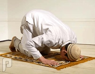 """""""البحث والتحري"""" تضبط 20 عاملاً تخلفوا عن الصلاة في """"وادي الدواسر"""""""