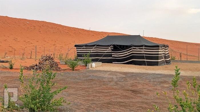 مزرعة للبيع المساحه5000 في المزاحمية