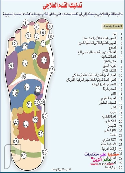 مساج القدمين ريفلوكسولوجي