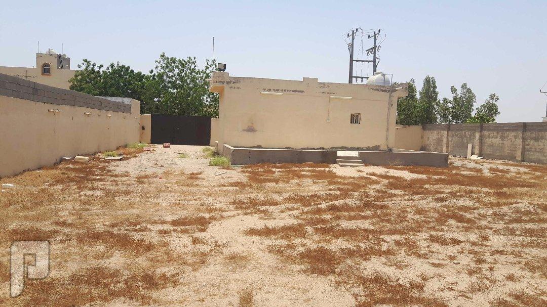 استراحة بحي القوزين بمساحة 1400 متر مربع