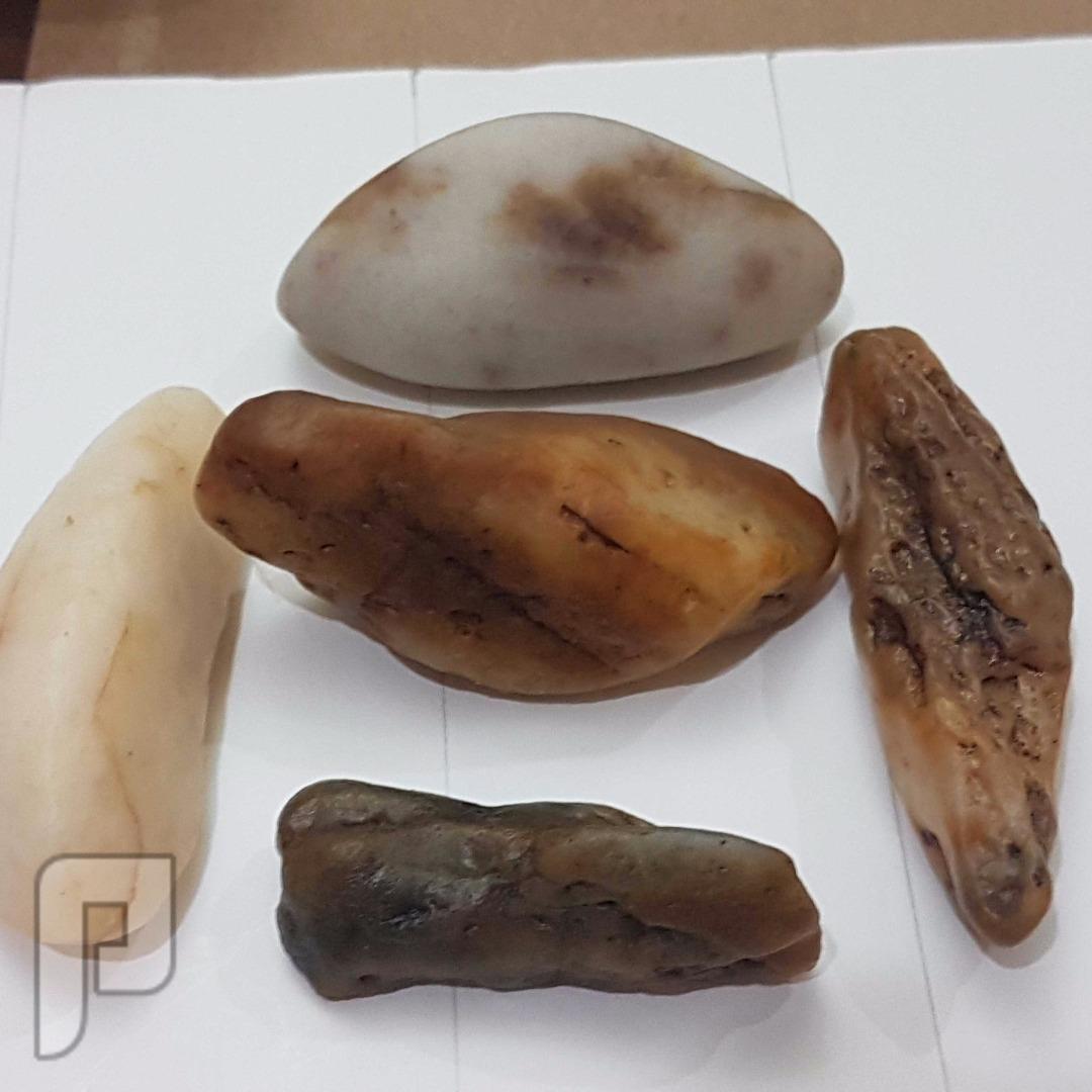 عملات معدنية متنوعة واحجار كريمة ونيزكية