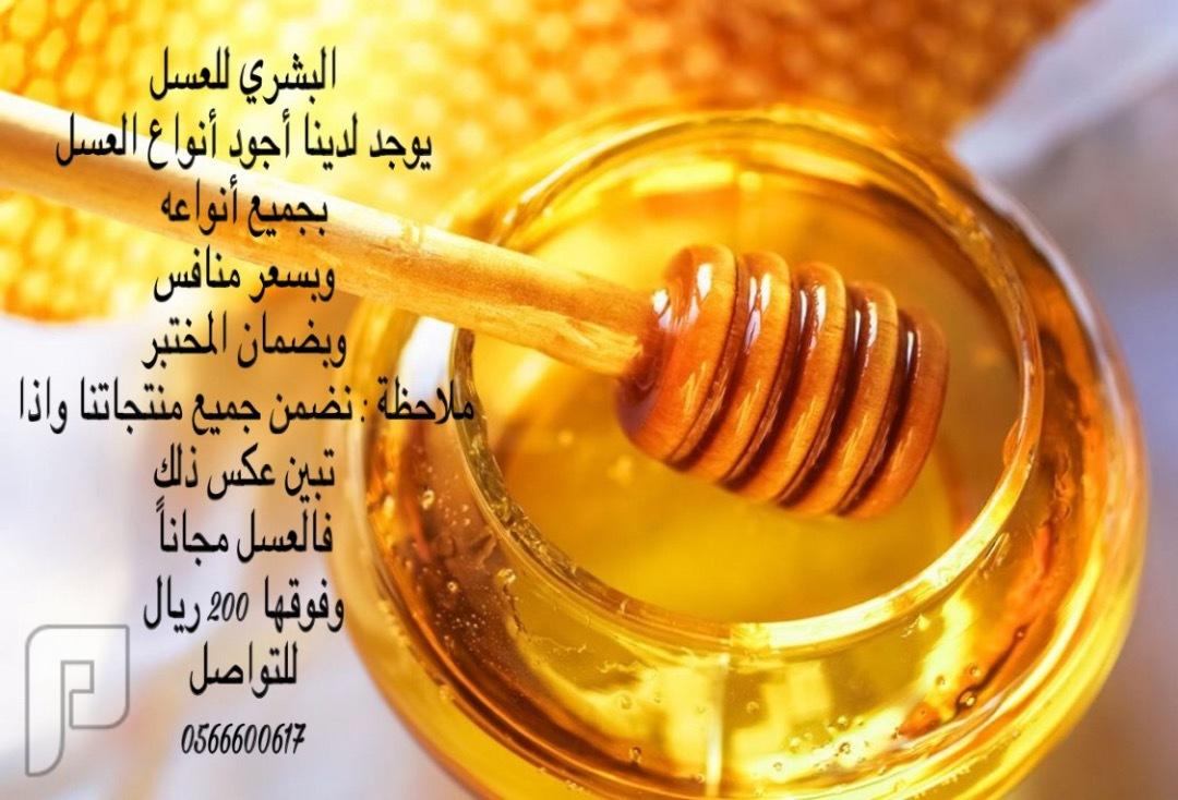 البشري للعسل البشري للعسل