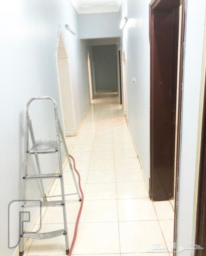للإيجار شقة حي الأزهري دور كامل نظيفة وكبيرة